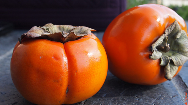 persimmons1